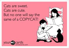 Cats are sweet. Cats are cute. But no one will say the same of a COPYCAT!lol