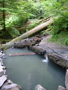 Olympic Hot Springs,  Olympic National Forest, Elwha entrance, 5 miles