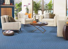 blue carpet room - Google Search
