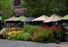 Lake Oswego, Oregon downtown. Beautiful landscaping and hanging flower containers.
