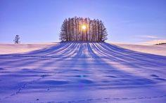 Mevsim kış