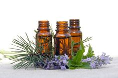 The best essential oils for your diffuser to prevent cold and flu viruses