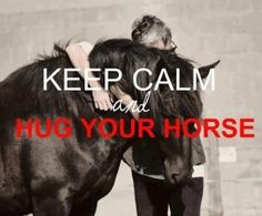 Benefits of Using #Equine Therapy In a Drug & Alcohol Treatment Program