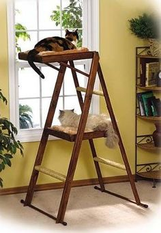 cat-tree-leap-sleep - good idea for repurposing an old wooden step ladder