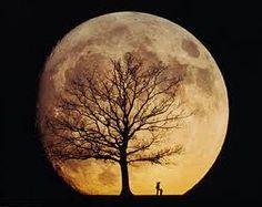 moon and trees tattoos - Pesquisa Google