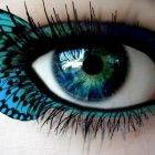 yeux de papillons