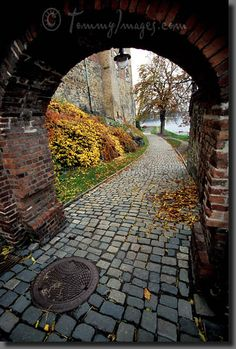 Entrance to Akershus Fort  Keywords: Stock Photo Picture Akershus Castle Akershus Festning Akershus Fortress Akershus Slott Arch Archway Attractions Autumn Defensive Wall Entrance Europe Fall Colors Kongeriket Noreg Kongeriket Norge Leaves Nordic Nordic Countries Norway Norwegian Landmarks Oslo Rampart Scandinavia Sights Stone Wall Style Vertical