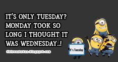 funny tuesday memes and funny tuesday morning quotes Happy Tuesday Meme, Tuesday Quotes Funny, Tuesday Motivation Quotes, Happy Tuesday Morning, Tuesday Humor, Funny Quotes, Funny Memes, Jokes, Morning Humor