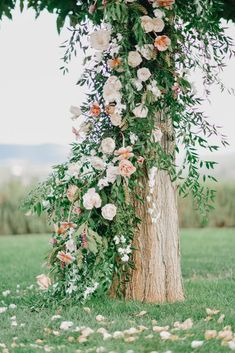 Creating a floral installation climbing up this beautiful old tree for the prettiest ceremony decor!  See this Timeless Tuscan Wedding in Pink and Peach by Morgane Ball Photography and destination planner Longoza Events on BLOVED Blog Wall Garden Indoor, Indoor Gardening, Balcony Garden, Tuscan Wedding, French Wedding, Floral Wedding Decorations, Ceremony Decorations, Wedding Event Planner, Destination Wedding