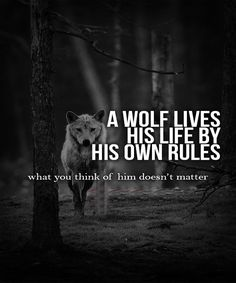 A WOLF LIVES HIS LIFE Friendship Quotes, Life Quotes, , Tattoos, Beautiful Places.