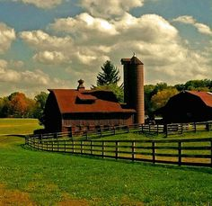 I'd love to wake up to this every day, i definitely want to live on a farm.