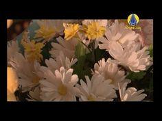 Tudo Artesanal | Flores do Campo por Alessandra Assi - 09 de Março de 2013 - YouTube
