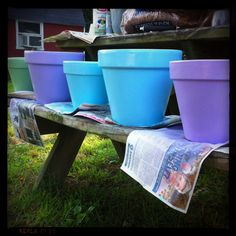 Painted clay pots for my container garden!