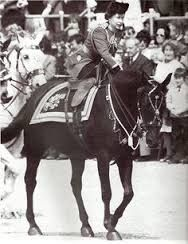 The Queen shot at 1981. The shots startled the Queen's horse, but she was able to bring it back under control within a few seconds. A 17 year old was overcome by police and guards and was arrested and jailed under the 1842 Treason Act.