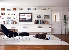 5 dicas de decoração para quem tem animais de estimação em casa -