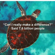 Most people do not know how much they affect everything around them . - Traurig aber Wahr - Welcome Haar Design Save Planet Earth, Save Our Earth, Our Planet, Save The Planet, Save Mother Earth, Mother Nature, Amazing Animals, Save Our Oceans, Environmental Issues