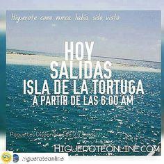 Hoy saliendo a la isla de la Tortuga bien tempranito a conocer #isladelatortuga #beach #paquetes #playa #playas #arenitaplayita #Higuerote #Barlovento #Miranda #Venezuela #turismo #viajar #vacaciones