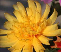 Chrysanthemum nylon flowers wedding by TheCallendersFlowers, $11.00