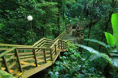 Parque de las Cavernas del Rio Camuy, Municipio de Hatillo