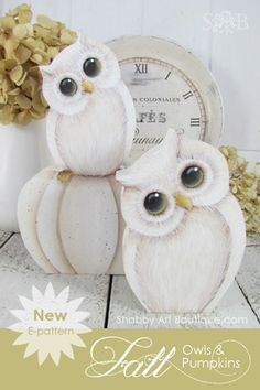 Make your own 'shabbilicious' doey-eyed owls and warm white wood pumpkins - Shabby Art Boutique