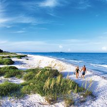 Things to Do: Beaches of St. Petersburg