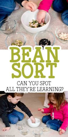 Bean Sort Easy Activity: There is so much learning packed into this easy indoor activity!