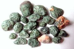 Michigan designated Isle Royale greenstone (chlorastrolite) as the official state gem in also called green starstone or turtle back in Michigan.