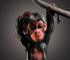 Character Design Animation, Little Monkeys, Zbrush, Behance, Photoshop, 3d, Gallery, Hair Styles, Check