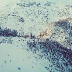 Swiss National Park | Switzerland