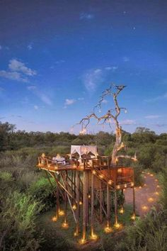"""Is it a tree house or is it glamping or some combination of the two? We can tell you it's the Lion Sands Ivory Lodge in Kruger Game Reserve. You'll find lots more examples in our """"Treehouses for the Child Within"""" album on our site at http://theownerbuildernetwork.co/quiet-spaces/tree-houses/ Don't forget to share your thoughts in the comments section."""