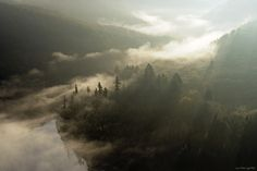 Eric Jacob Follow River, Forest, Mist and Sun