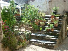 Escaleras medievales con olor jardín y su encanto