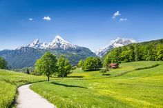 Auszeit im Bayerischen Wald: 3 Tage im 3,5 Sterne Hotel inkl. Halbpension, Galadinner, Wellness und Eissporthalle für 59€  #wellness #bayern