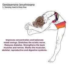 bikram yoga postures illustrated with real bodies Bikram Yoga Postures, Bikram Yoga Benefits, Fitness Motivation Wallpaper, Free Yoga Videos, Yoga Anatomy, Yoga Poses For Beginners, Yoga Meditation, Hot Poses, Real Bodies