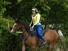 esther's endurance exploits   A collection of ride reports (UK, EGB West Riding)