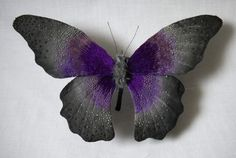 Wide Butterfly Sculptures Hand-Crafted with Gorgeous Detail One-Foot Wide Butterfly Sculptures by North Carolina-based Japanese artist Yumi Okita.One-Foot Wide Butterfly Sculptures by North Carolina-based Japanese artist Yumi Okita. Sculpture Textile, Soft Sculpture, Textile Art, Butterfly Quilt, Butterfly Crafts, Butterfly Project, Butterfly Watercolor, Wet Felting, Needle Felting