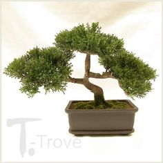 """$17.43 Artificial Japanese Bonsai Tree. If you don't find the time to care for a Bonsai tree but you love the decor element, then this product is for you. The Artificial Japanese Bonsai Tree has a size of 12"""" wide, 2.5"""" tall and comes with a brown plastic Pot. Flowering Bonsai Tree, Japanese Bonsai Tree, Bonsai Trees For Sale, Bonsai Tree Care, Bonsai Tree Types, Bonsai Plants, Artificial Orchids, Artificial Tree, Home Office"""