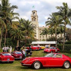 The Ferrari 275 GTB in all its variations is one of my favorite Ferrari models. Cavallino Classic Concours d'Elégance at The Breakers Hotel in Palm Beach, FL on January 25, 2014. #ferrari #ferrari70 #ferrari275 #ferrari275gtb #ferrari275gtb4 #ferrari275gtbc #275gtb #275gtb4 #275gtb4cam #ferrari275gtb2 #cavallino #cavallinoclassic #palmbeach #florida #thebreakers #thebreakershotel #breakershotel #epic #andreasbirner
