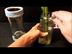 Reciclar con botellas de cristal