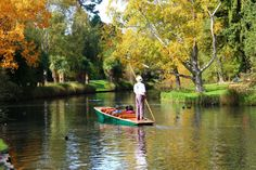 Punting on River Avon, Christchurch - 6 hours from Queenstown Driving In New Zealand, Stuff To Do, Things To Do, Christchurch New Zealand, Take Better Photos, Travel Articles, Activities To Do, Stand Tall, Us Images