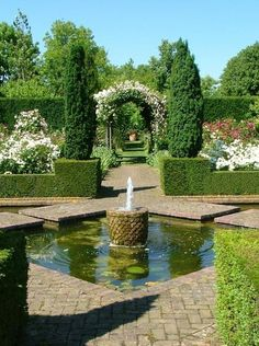Amazing Pond in Beautiful garden.