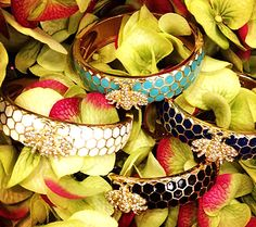 Bee-licious and sweet as honey, the Honey Bee bangles in these four colors! #SwellCaroline #ArmCandy