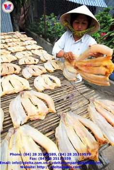 Pangasius fish skin: News Western Food, Fried Fish, Catfish, Fries, Stuffed Mushrooms, Vegetables, News, Fish Fry, Stuff Mushrooms