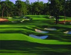 Pinehurst - not sure what no. course this is but I'd like to play all 5