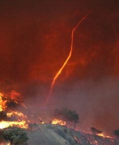 Fire tornado north of Los Angeles, California. Weather Storm, Wild Weather, Tornados, All Nature, Nature Images, Mother Earth, Mother Nature, Fire Tornado, Underwater Creatures