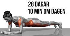5 enkla övningar som kommer förvandla din kropp på bara fyra veckor - Hälsobibeln