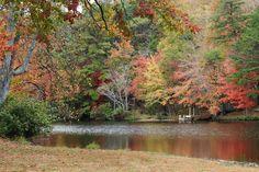 Autumn in the United States--Alabama