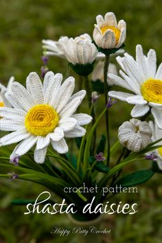 Ravelry: Shasta Daisy Flower crochet pattern by Happy Patty Crochet