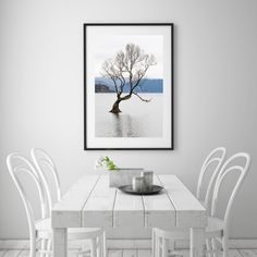 Excited to share the latest addition to my #etsy shop: Digital Download - Wanaka Tree - Lake Wanaka NZ - New Zealand Photography - NZ Photo Print - Wall Decor - Travel Print - New Zealand Poster Lake Wanaka, Printing Services, Wall Prints, No Time For Me, New Zealand, Wall Decor, Etsy Shop, Digital, Poster
