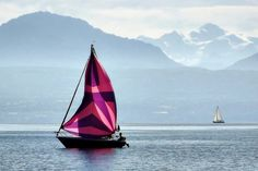 Picture perfect sailing Morges, Switzerland. Geneva, Switzerland, Sailing, Adventure, Nature, Pictures, Beautiful Places, Naturaleza, Boating